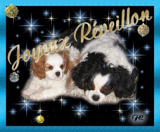 Bon Reveillon et Joyeux noel à tous Iry0dy3s